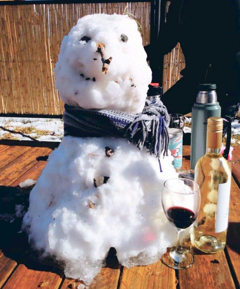 Cabañas Las Espuelas en Potrerillos, a pleno en vacaciones de invierno 2020 2